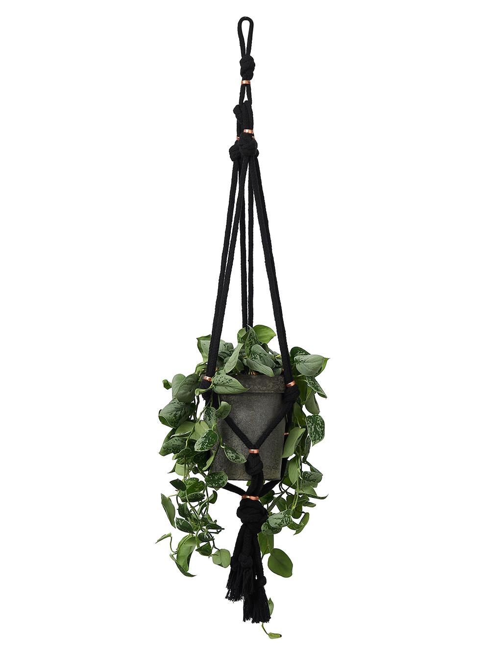 Black macrame hanger with copper and plant